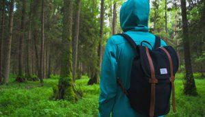 Miljötjänster - Naturvärdesbedömningar. Naturvärdesbedömningar och biotopkarteringar utförs för att skaffa sig kännedom om vilka naturvärden och ev. skyddsvärda arter av växter och djur som kan finnas inom ett område.